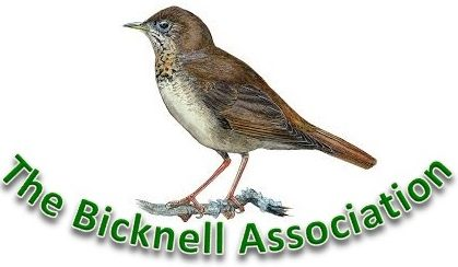 The Bicknell Association