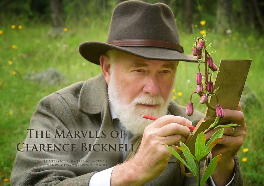 Clarence Bicknell 1842-1918